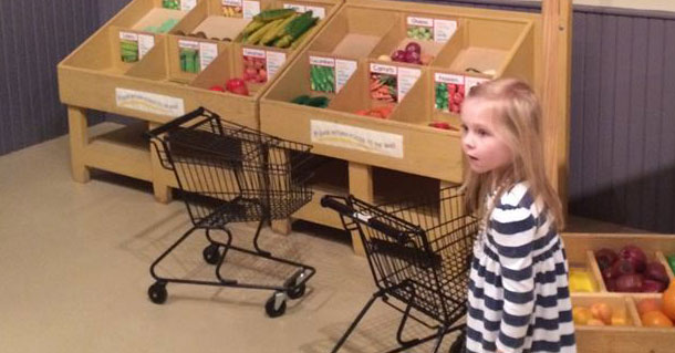 Shopping Carts for the Texas Children's Museum